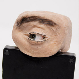Eyecam: Revealing Relations Between Humans and Sensing Devices Through an Anthropomorphic Webcam